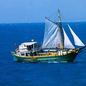 delos-sailing-01