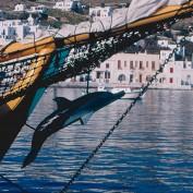mykonos-sailing--delos-sailing--mykonos-to-delos-shore-excursion--02